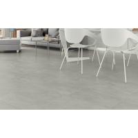 43.8m2 Pallet -Rector Gris Glazed Porcelain 60,5CMx60,5CM Kitchen and Bathroom Wall And Floor Tile