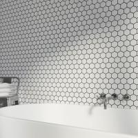 White Hexagan 30CM x 30CM Mosaic Sheet